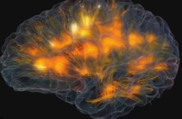 La musique et le cerveau
